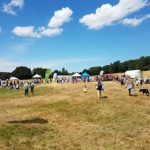 Hertfordshire's wildlife celebrated at fesitval.