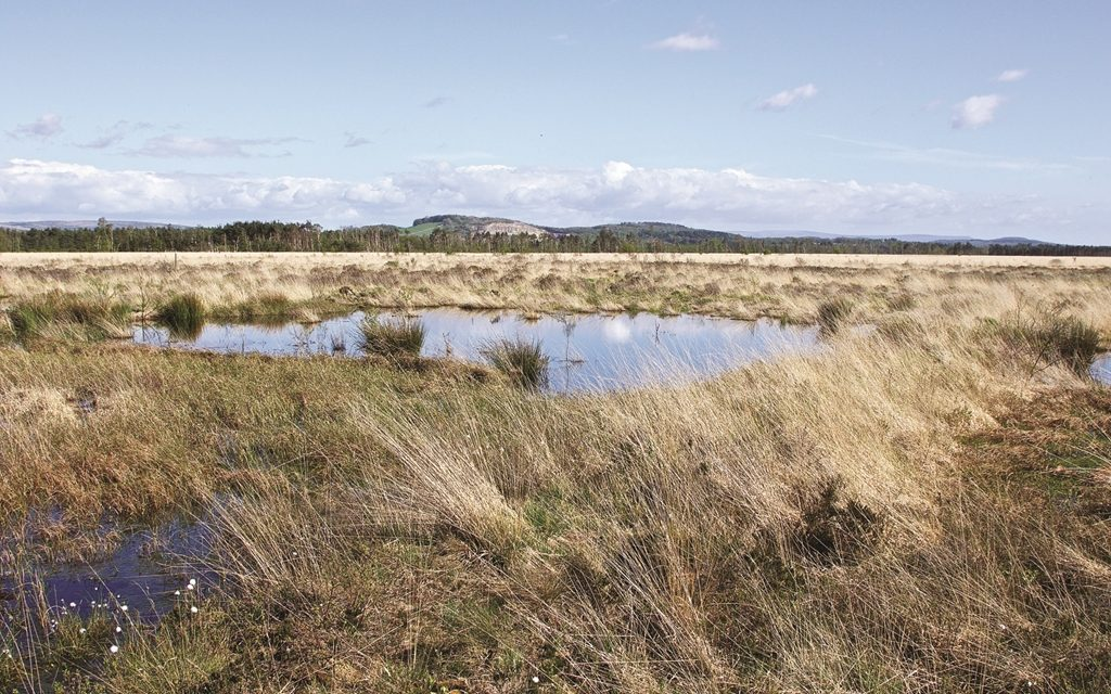 Tarmac supports Cumbria Wildlife Trust in improving visitors experience at flagship South Lakes nature reserve