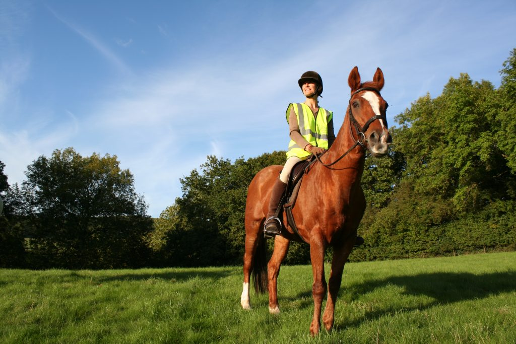 British Horse Society and Tarmac join forces to revive Hampshire bridleway