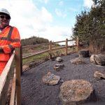 Tarmac ensures fossilised ferns preserved
